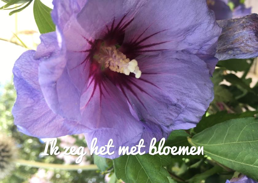 Bloemenkaarten - paarse bloem ME