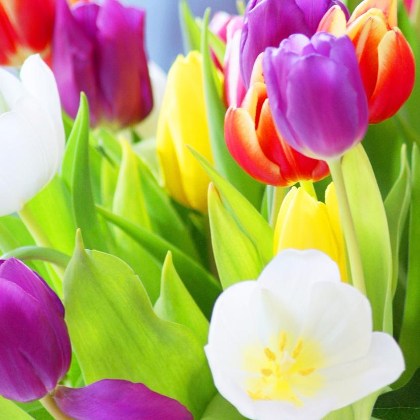 Bloemenkaarten - Tulpen kleurig