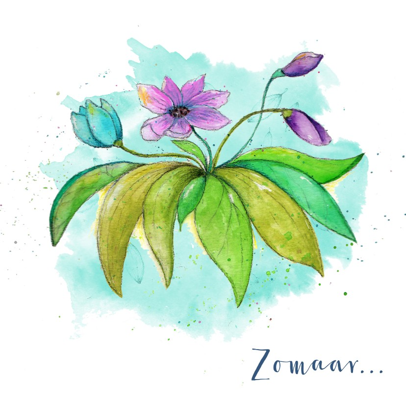 Bloemenkaarten - Zomaar wilde bloemen voor jou