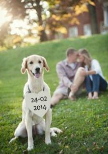 Save the date kaart met hond