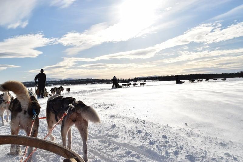 Witte kerst in Finland
