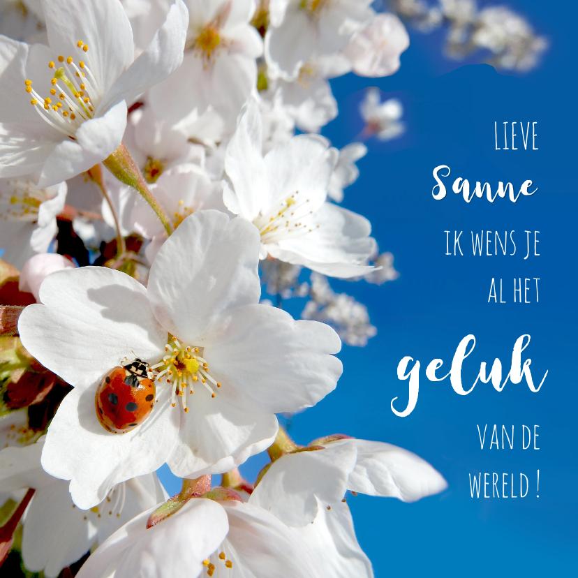 Coachingskaarten - Coaching geluk lieveheerstbeest lente