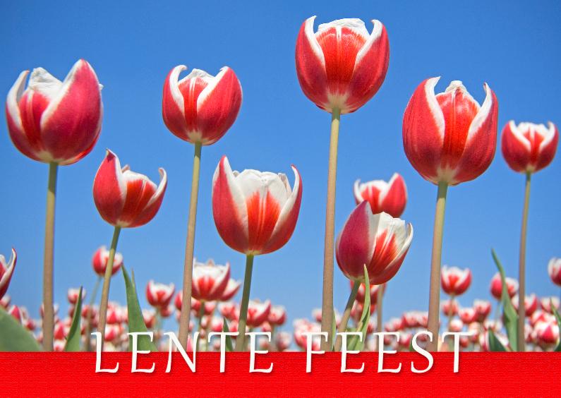 Communiekaarten - Communiekaart Lentefeest Tulpen