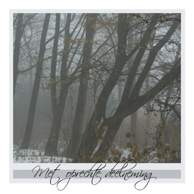 Condoleancekaarten - 4knt Grauwe koude dag
