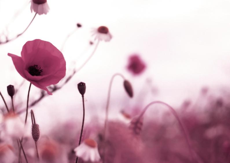 Condoleancekaarten - Bloemenkaart  condoleance - BK