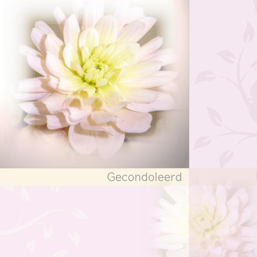 Condoleancekaarten - Condoleance dahlia