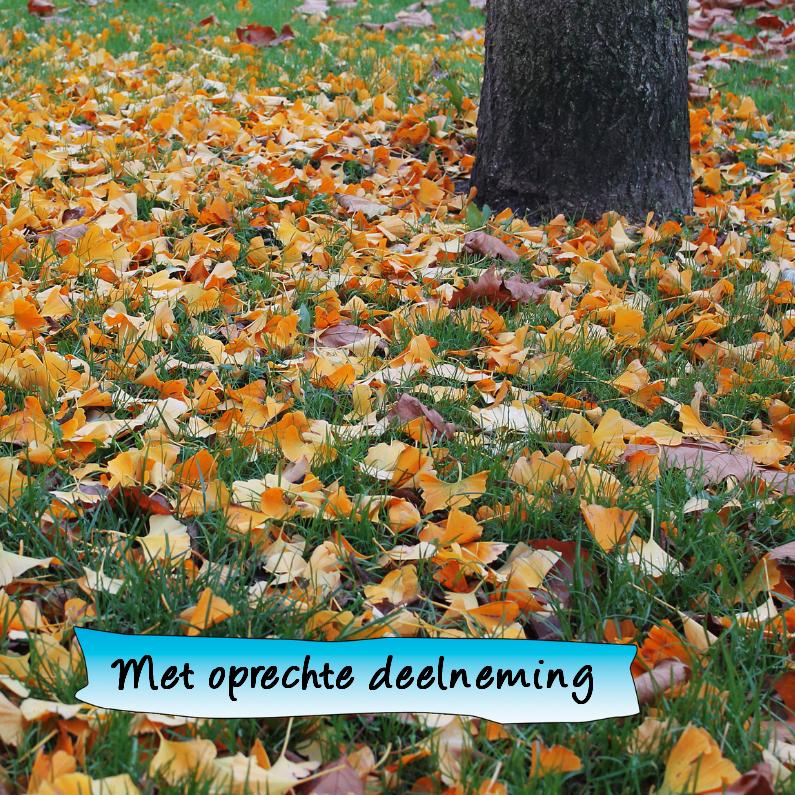 Condoleancekaarten - Condoleance herfst oranje