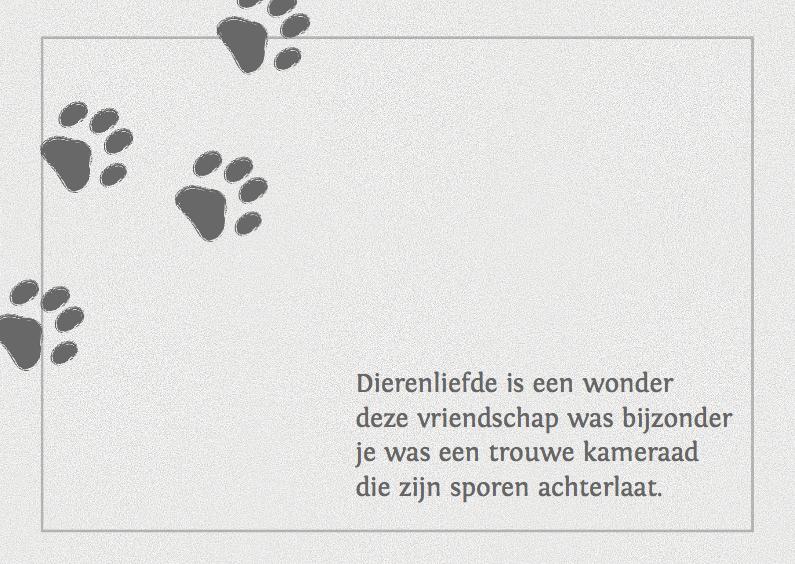 Condoleancekaarten - Condoleance kaart voor een hond of poes
