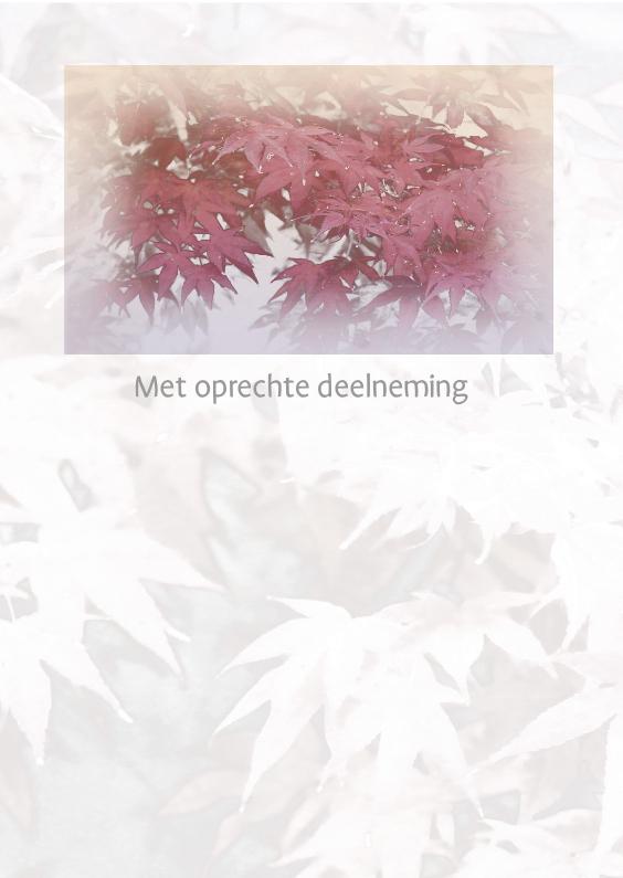 Condoleancekaarten - condoleance met bladeren