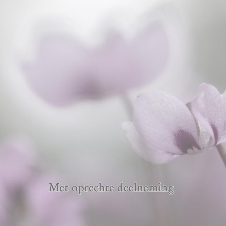 Condoleancekaarten - Condoleance met cyclaam