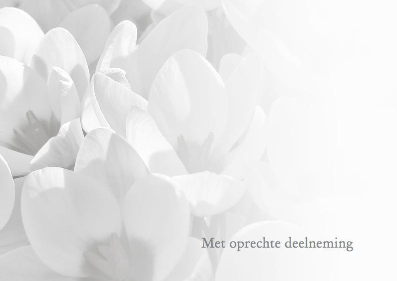 Condoleancekaarten - Condoleance met krokus