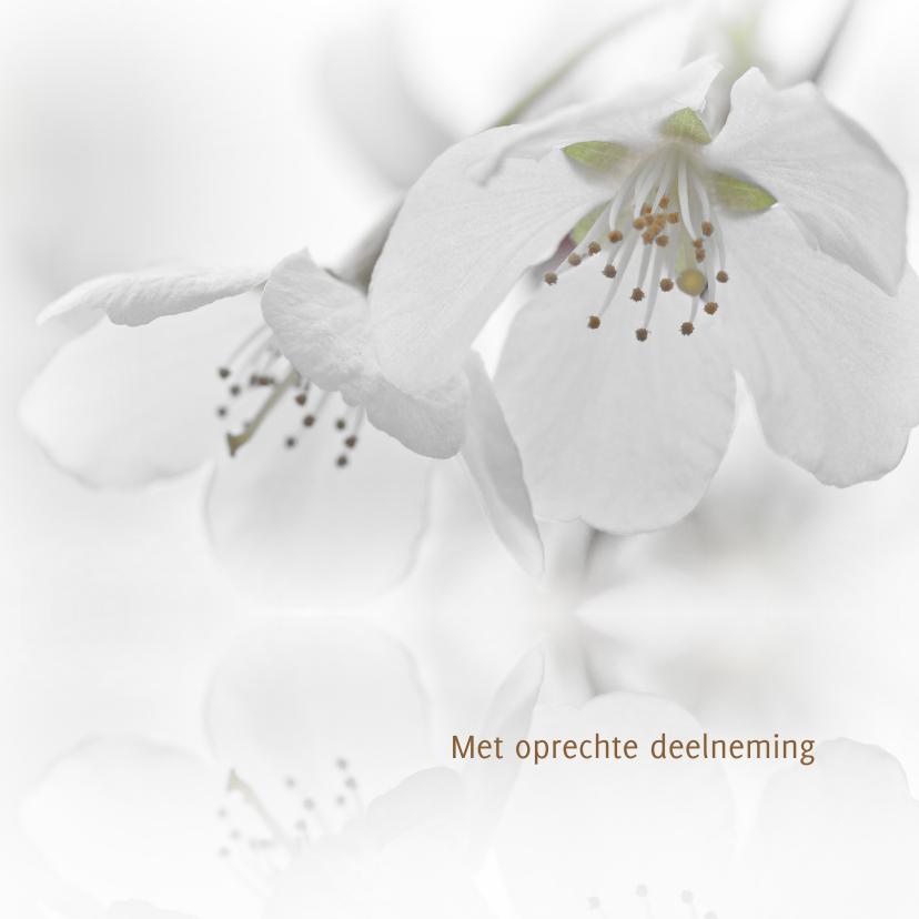 Condoleancekaarten - Condoleance met witte bloesem