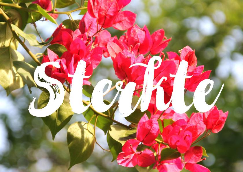 Condoleancekaarten - Condoleance roze bloemen