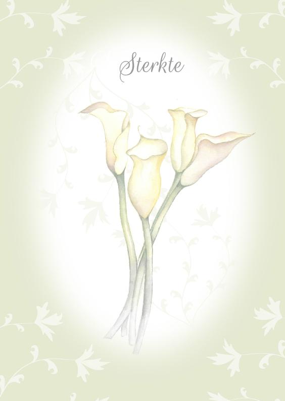 Condoleancekaarten - condoleance sterkte bloemen