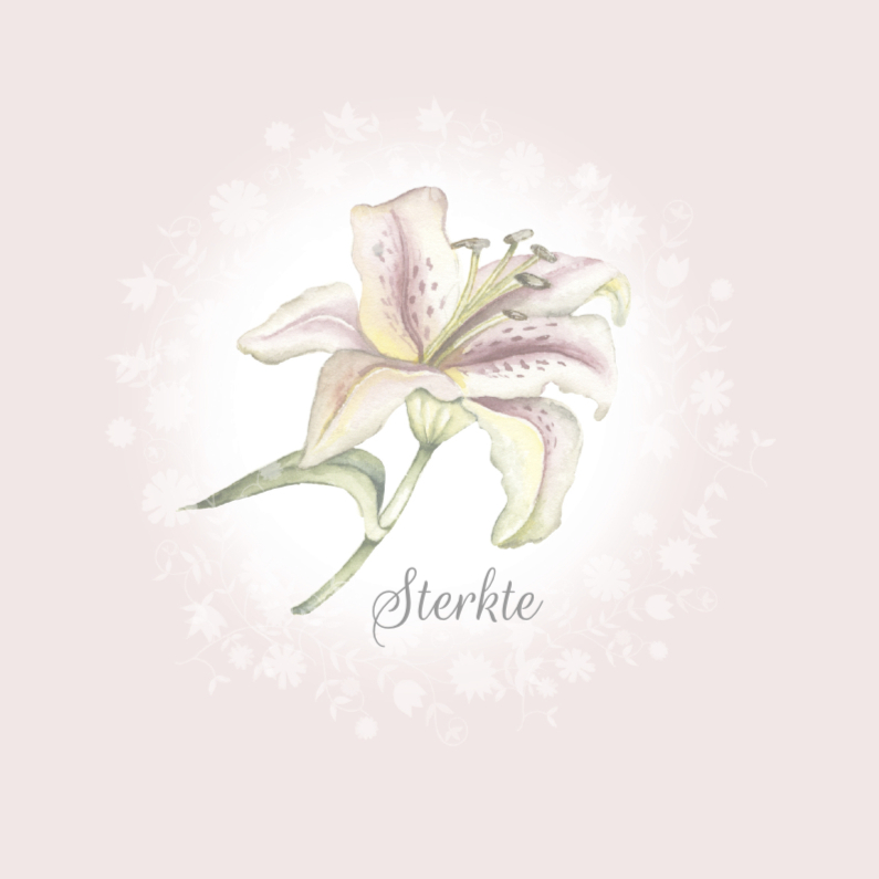 Condoleancekaarten - Condoleance sterkte lelie
