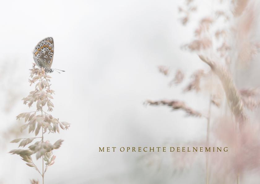Condoleancekaarten - Condoleance vlinder en grassen