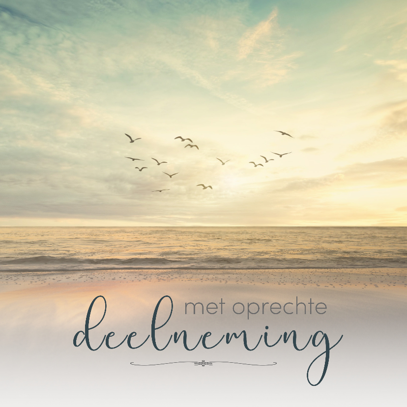 Condoleancekaarten - Condoleance - vogels zee