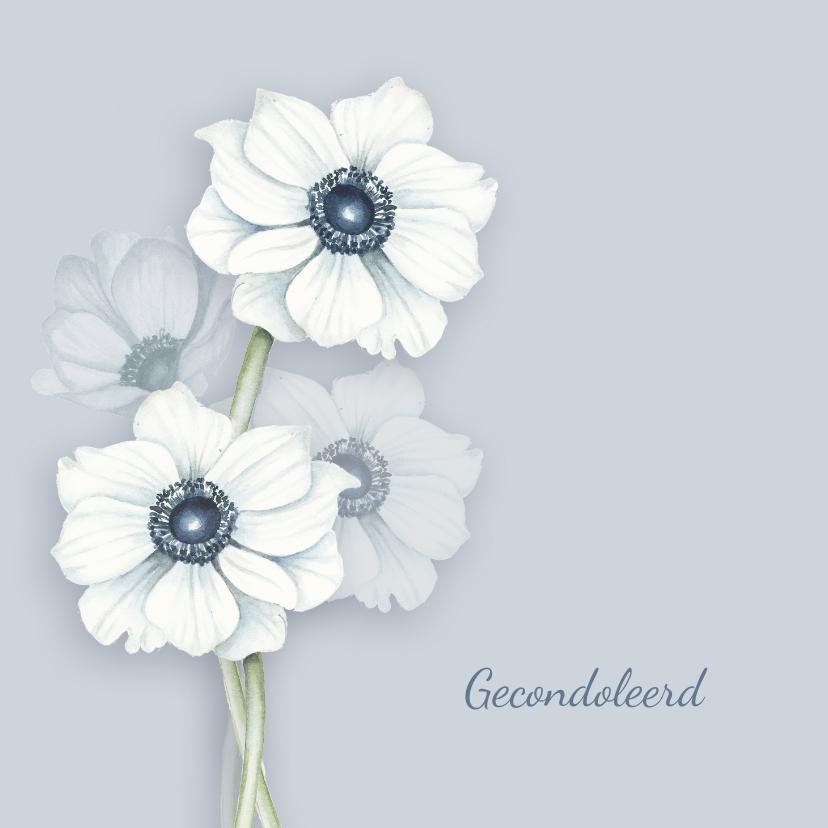 Condoleancekaarten - Condoleance witte anemonen