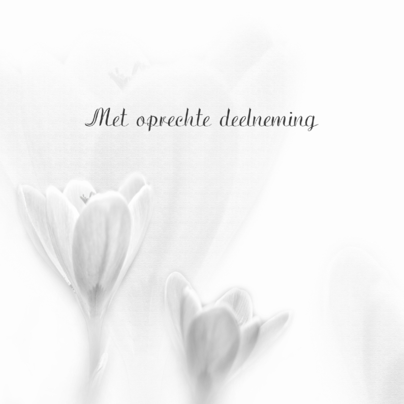 Condoleancekaarten - Condoleance zwart-wit krokus