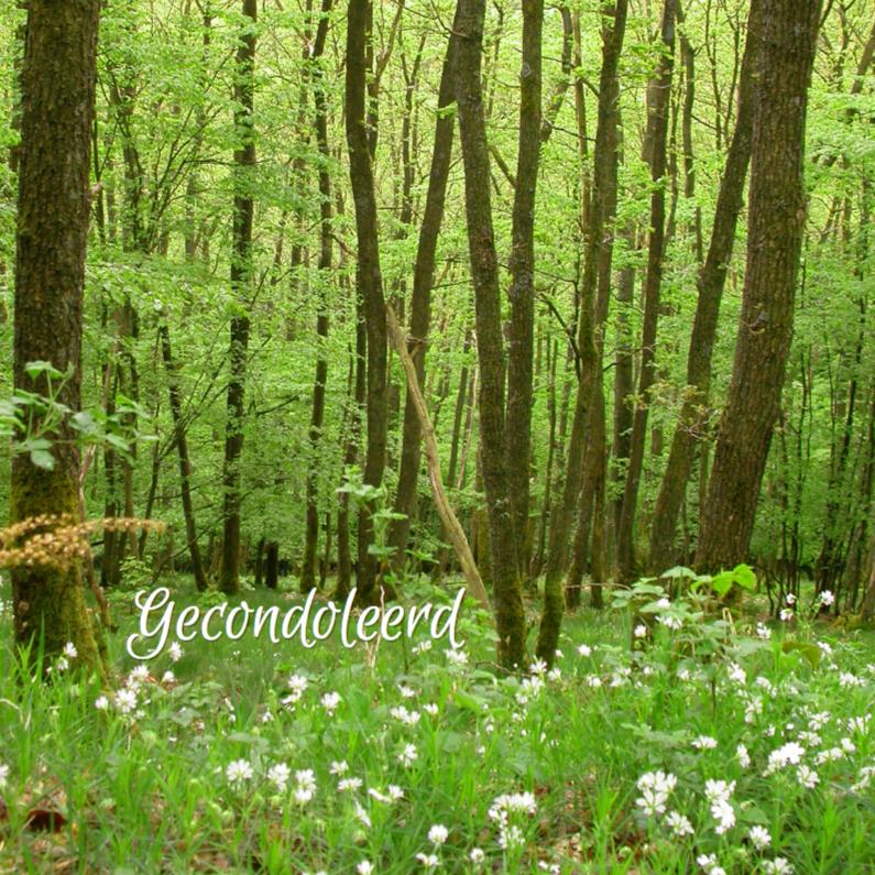 Condoleancekaarten - Condoleancekaart Bomen in veld