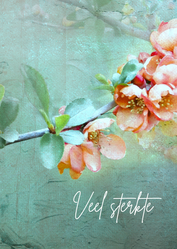 Condoleancekaarten - Condoleancekaart deelneming peren bloesem
