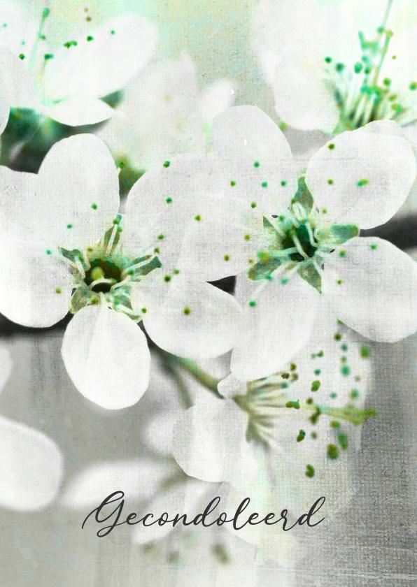 Condoleancekaarten - Condoleancekaart fris wit groen bloesem