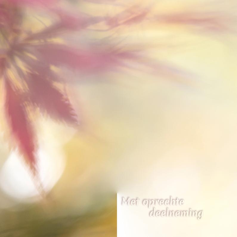 Condoleancekaarten - Condoleancekaart herfstblad