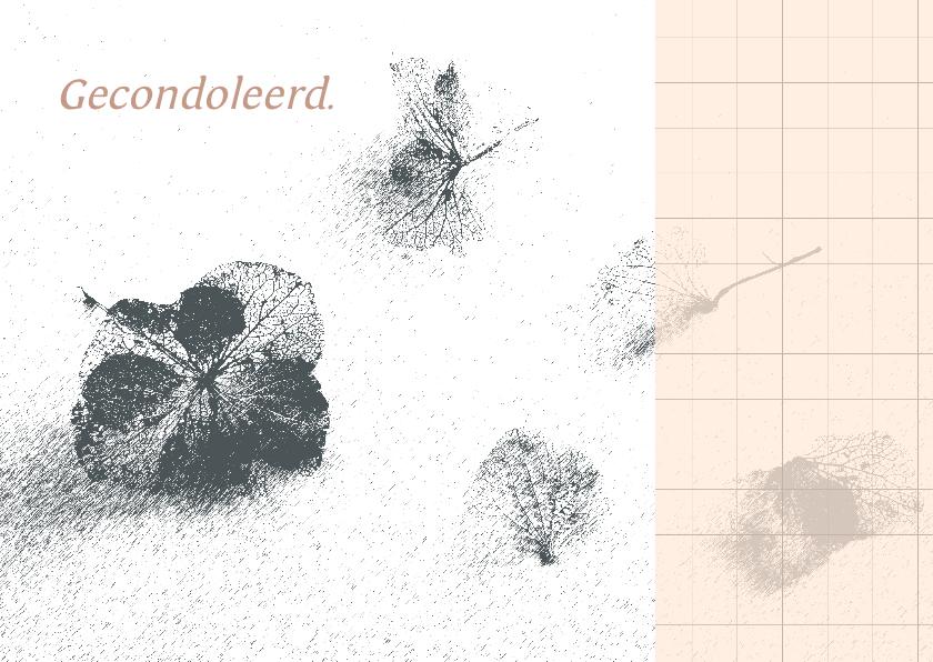 Condoleancekaarten - Condoleancekaart hortensia