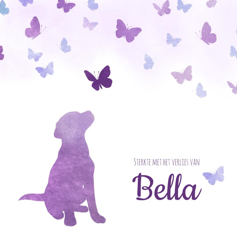 Condoleancekaarten - Condoleancekaart Huisdier hond met vlinders