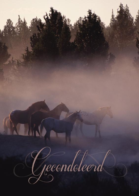 Condoleancekaarten - Condoleancekaart van paarden in de mist