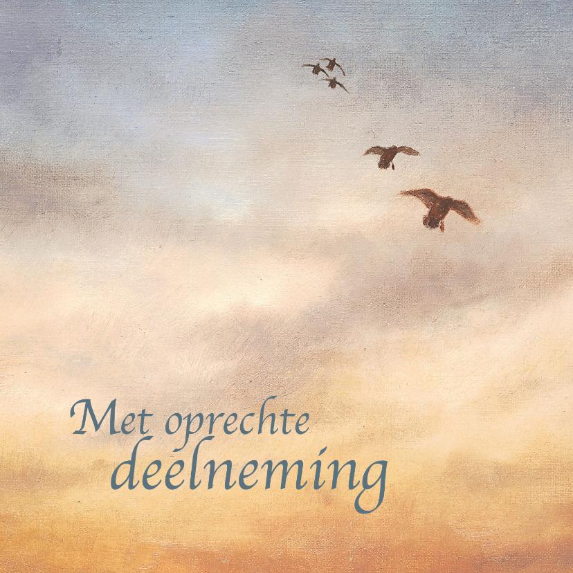 Condoleancekaarten - Condoleancekaart vogels bij zonsondergang