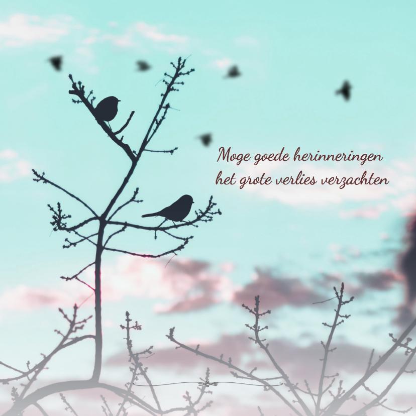 Condoleancekaarten - Condoleancekaart vogels boom