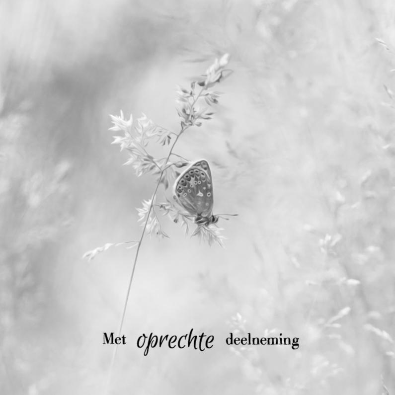 Condoleancekaarten - Condoleren vlinder en grassen