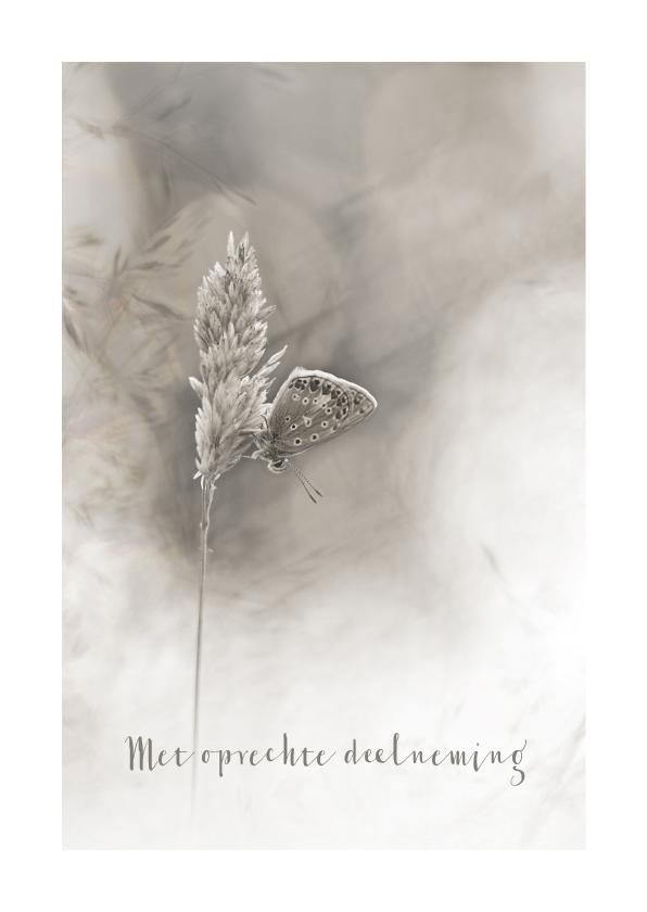 Condoleancekaarten - Deelneming grassen en vlinder
