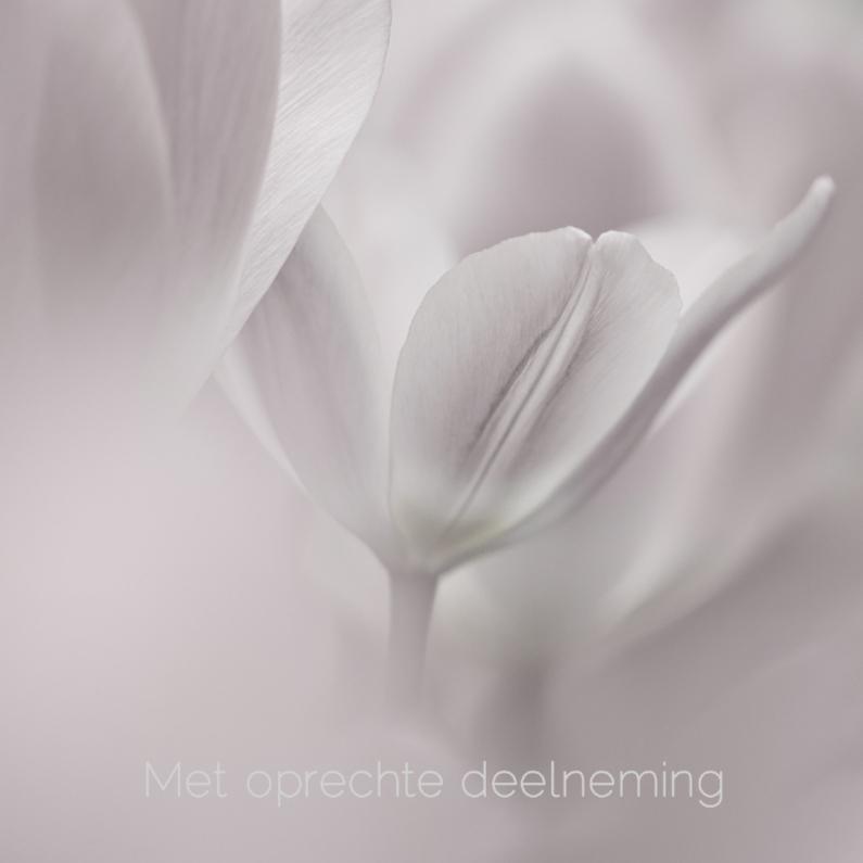 Condoleancekaarten - Deelneming met tulp