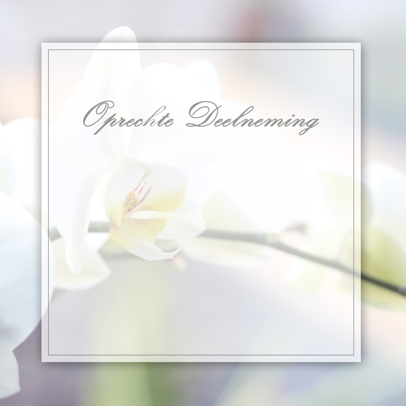 Condoleancekaarten - Deelneming Orchidee