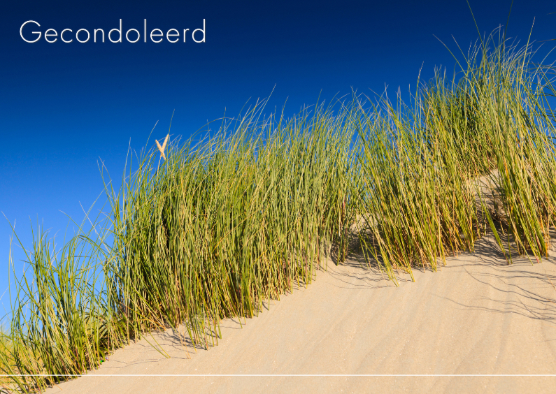 Condoleancekaarten - Duinen langs de kust