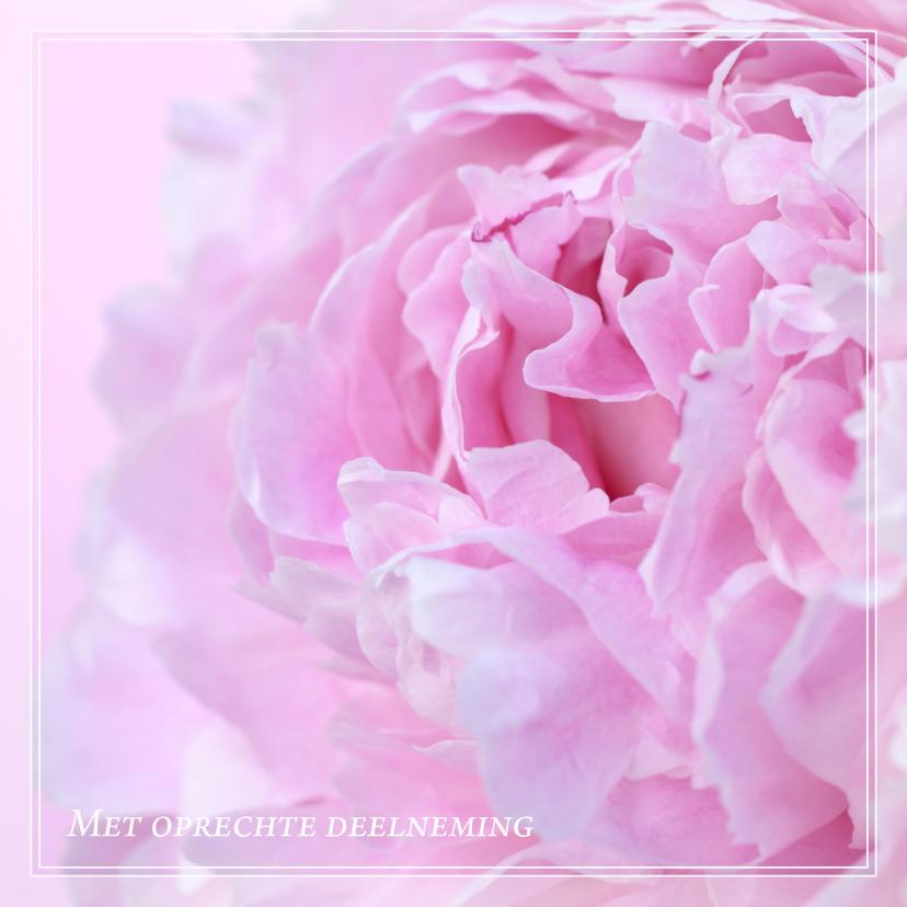 Condoleancekaarten - Gecondoleerd II