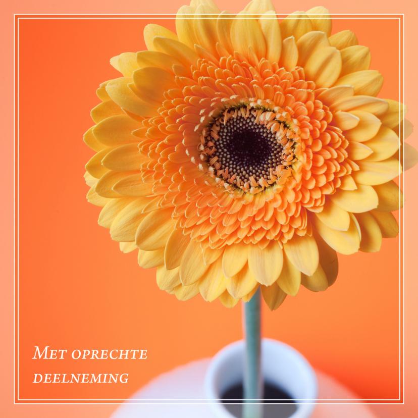 Condoleancekaarten - Gecondoleerd XX