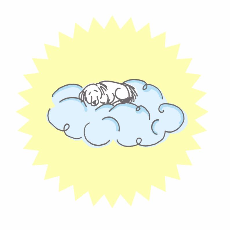 Condoleancekaarten - hond op wolkje