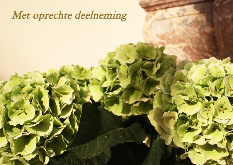 Condoleancekaarten - hortensia voor marmeren schouw