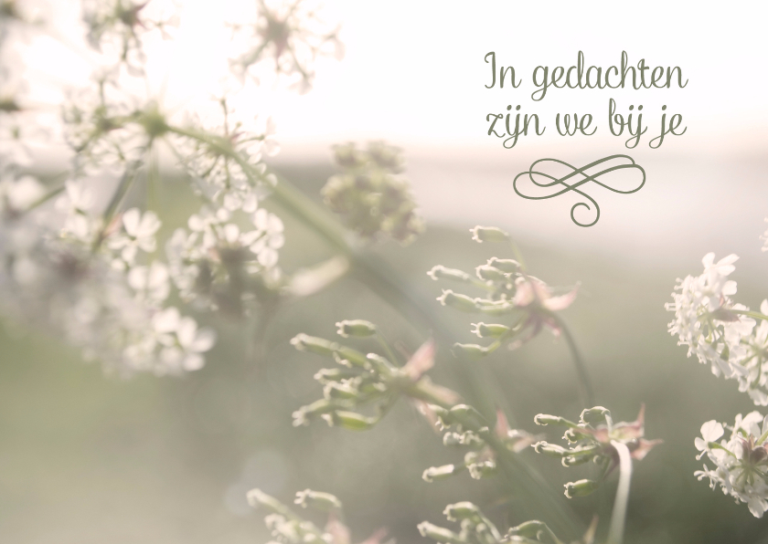 Condoleancekaarten - In gedachten bij je bloesem met lucht