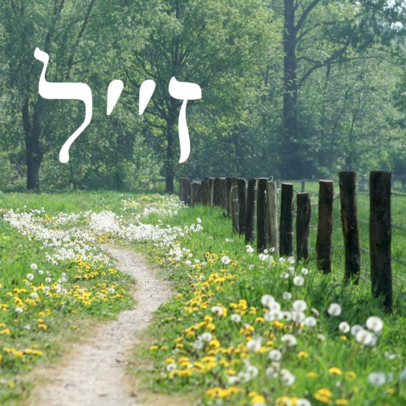 Condoleancekaarten - joods hebreeuws overlijden paadje