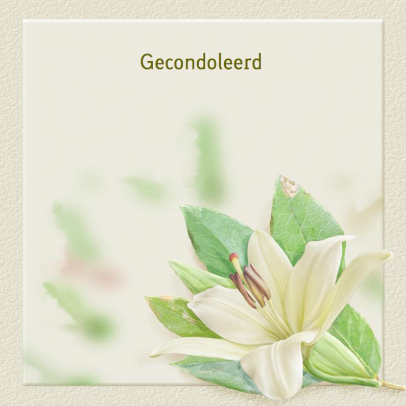 Condoleancekaarten - Klassieke condoleancekaart met lelie op gewassen achtergrond