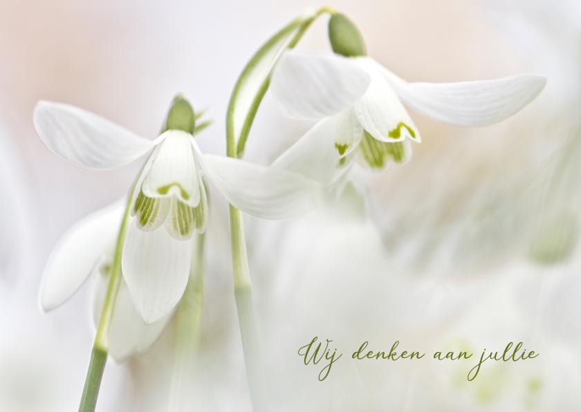Condoleancekaarten - Medeleven witte sneeuwklokjes