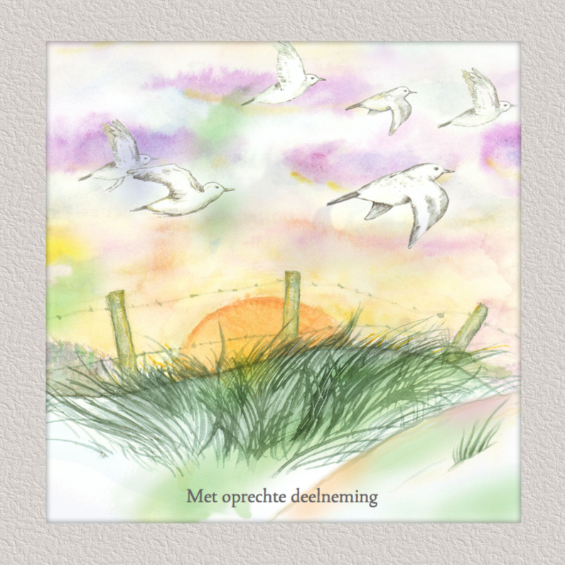 Condoleancekaarten - Mooie condoleancekaart met vogels en ondergaande zon