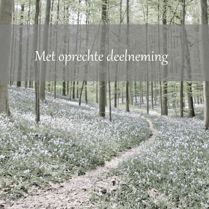 Condoleancekaarten - Pad door het bos