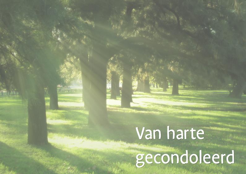 Condoleancekaarten - Rustieke condoleance