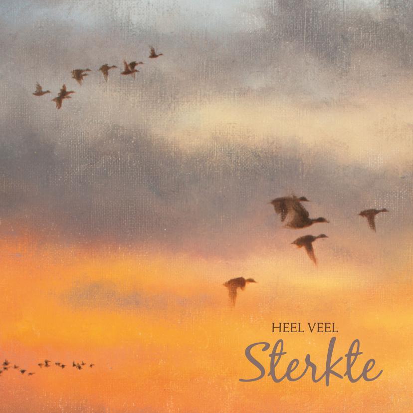 Condoleancekaarten - Sterkte kaart met vogels in de lucht en ondergaande zon