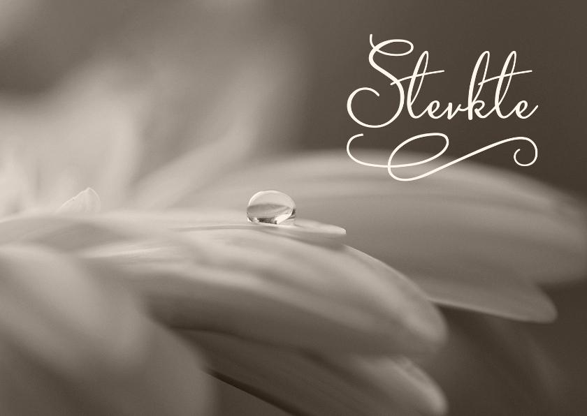 Condoleancekaarten - Sterkte kaart sepia bloem